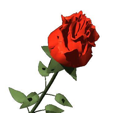 imagenes rosas sin fondo im 225 genes para crear firmas flores y mas flores