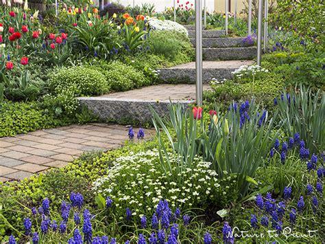 Pflanzen Am Hang by So Bepflanzen Sie Hangbeete Sch 246 N Und Abwechslungsreich