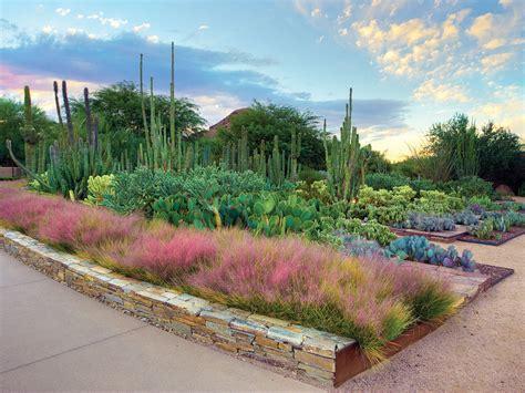Desert Botanical Gardens Top 13 Gardens Sunset