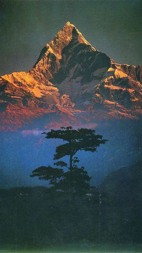 nature landscape mountains trees portrait display
