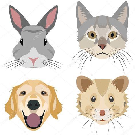imagenes vectoriales de animales colecci 243 n de cabezas de animales dom 233 sticos vector de