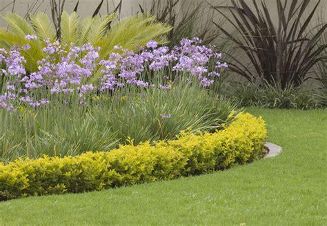 Permalink to garden plants for shade – SHADE PERENNIALS   LAVENDER BLUE GARDEN DESIGN