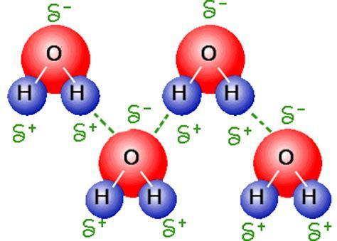 H2o Periodic Table Hydrogen Bonding Intermolecular Forces