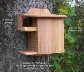 squirrel house and squirrel feeder pictures