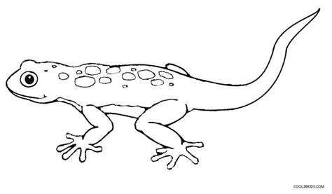 free printable coloring pages lizard printable lizard coloring pages for kids cool2bkids