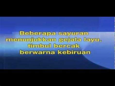 Pupuk Hormonik Nasa pupuk nasa supernasa pocnasa hormonik 081225999901