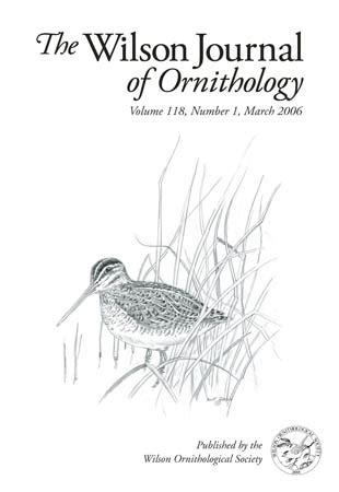 the wilson journal of ornithology ornithological
