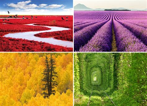colorful landscapes 44 colorful landscapes highlighting the unbelievably