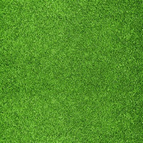 Grass Paper - scrapbook customs sports collection 12 x 12 paper