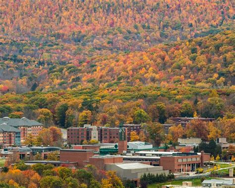 Binghamton Mba Reviews by A Year In Review 2017 In 17 Photos Binghamton