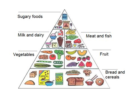 food pyramid tell me tell me
