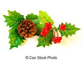 mistletoe stock photo images 8 216 mistletoe royalty free