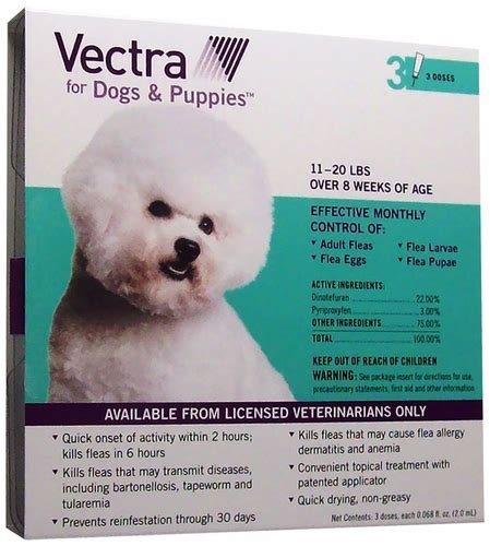 vectra for dogs vectra dogs and puppies 11 to 25 lbs 3 pk healthypets