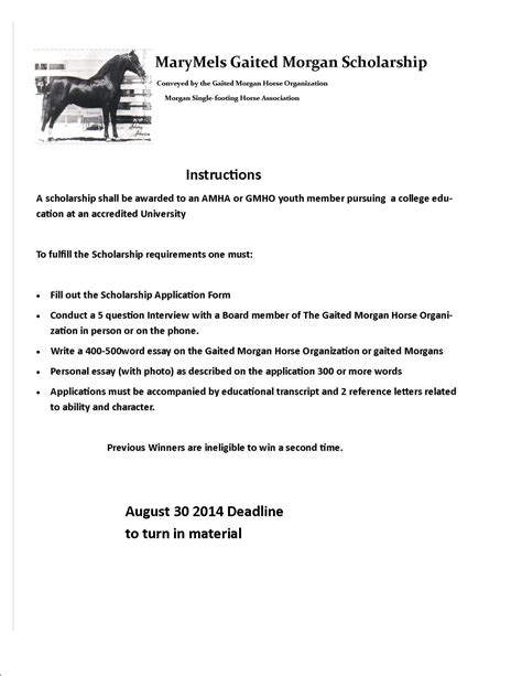 Scholarship Essay 2014 by Scholarship Essay Prompts 2014 Software Analyst Sle Resume