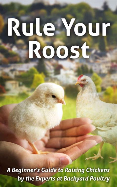 15 best backyard poultry magazine images on