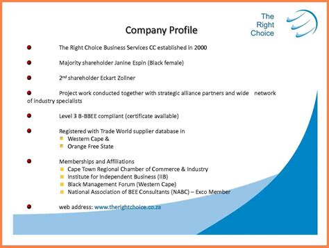 8 information technology company profile sle company