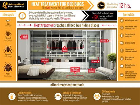 heat treatment bed bugs bed bug heat treatment the best bed bug extermination