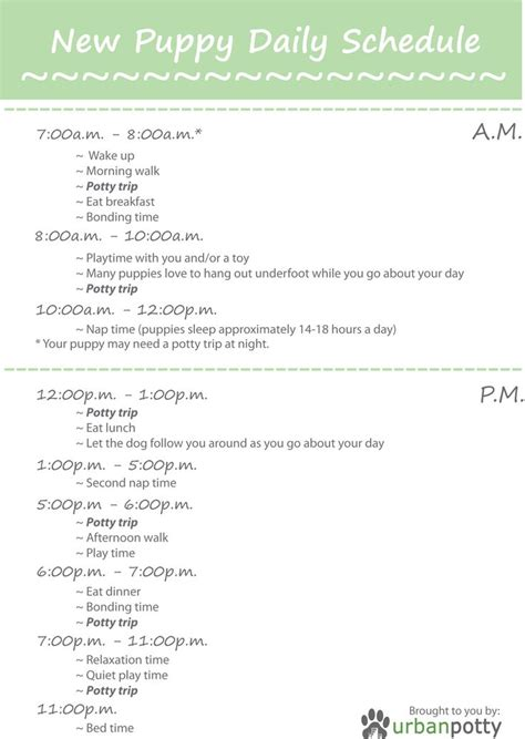 puppy vaccination schedule pdf printable checklist by potty new puppy daily schedule up what you need at