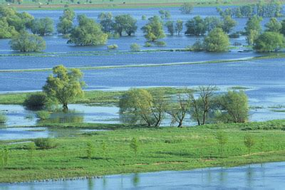 what are flood plains evidence and theories of a great flood evidence and