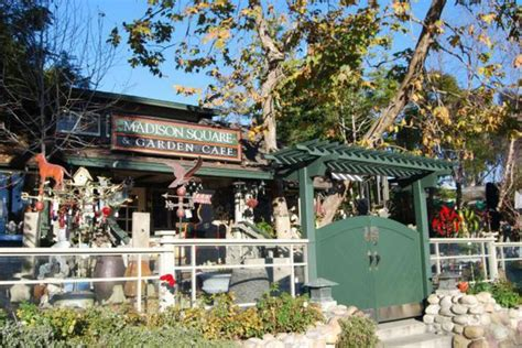Restaurants Near Square Garden by Square Garden Cafe Laguna Ca