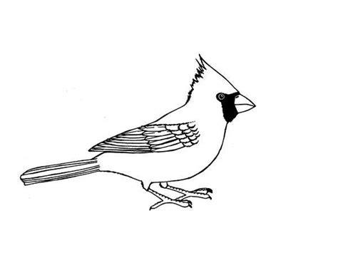 free coloring pages cardinal bird coloring page of a cardinal bird murderthestout