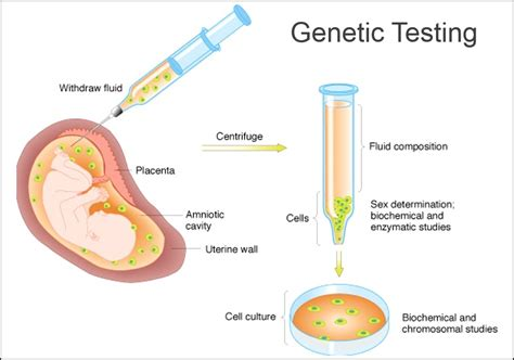 genetic test genetic testing circle health care