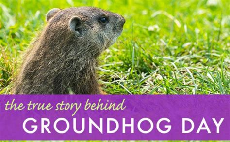 groundhog day x files groundhog day x files 28 images articles archives page