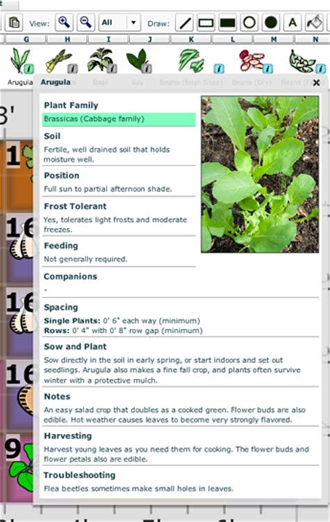 growveg vegetable gardening software square foot