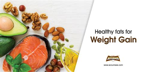 healthy fats for weight gain healthy fats for weight gain