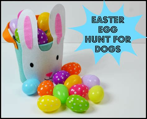 eggs for puppies how to make an easter egg hunt for your stilwell positively
