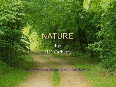 themes of nature by hd carberry nature by h d carberry