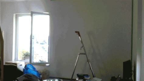 find a house painter house painting gifs find share on giphy