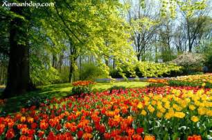 Beautiful Images Of Flower Gardens Beautiful Flower Gardens Photos Garden Picturess Xemanhdep Photos Awesome Pictures Gallery