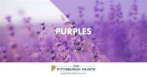 ppg pittsburgh paints purple paint colors