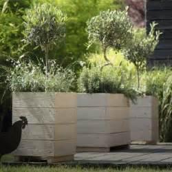 Formidable Arbre En Pot Pour Terrasse #2: structurer-sa-terrasse_bloc_conseil.jpg