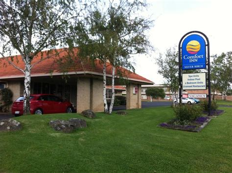comfort inn silver lake the blue lake picture of mount gambier south australia