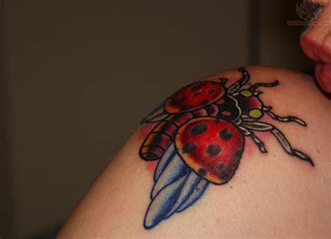 ladybug tattoos designs ladybug images designs
