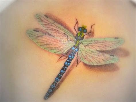 3d dragonfly tattoos dragonfly designs view more tattoos pictures