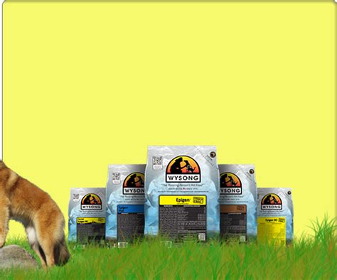 bench and field dog food reviews healthy dog cat food natural holistic wysong autos post
