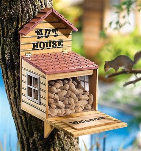 photo of a squirrel house nut house squirrel feeder