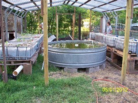 backyard aquaculture 25 best ideas about aquaponics supplies on pinterest backyard aquaponics