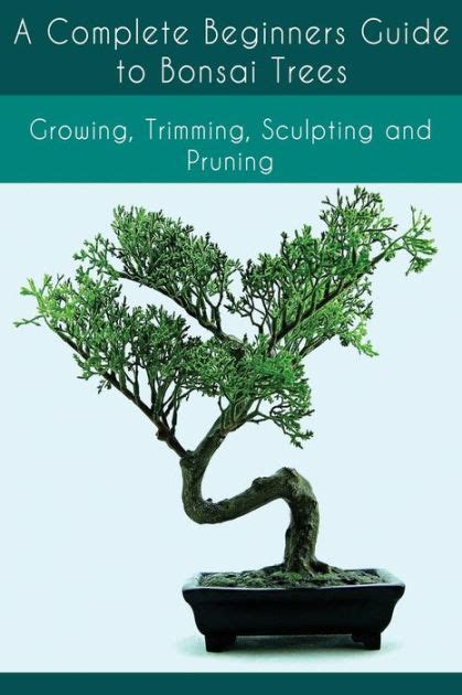 bonsai the complete guide b000iobreq a complete beginners guide to bonsai trees growing trimming sculpting and pruning bonsai