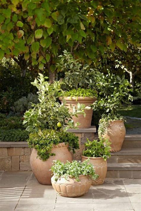 flower pots jardim toscano jardins pequenos jardim