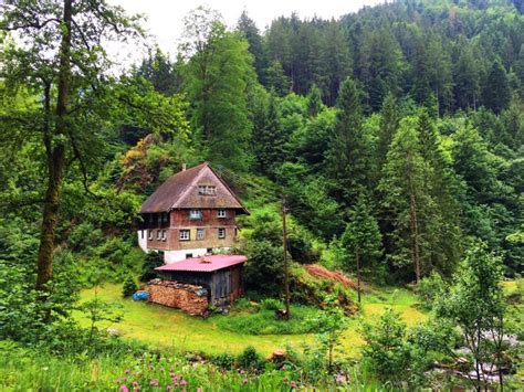 the black forest germany homestead in germany s black forest