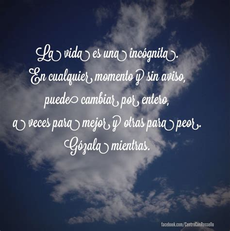 imagenes y frases increibles 33 best images about frases para pensar on pinterest