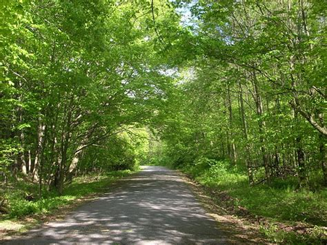 Blue Knob State Park by Blue Knob Trail Stopped At Blue Knob State Park On The