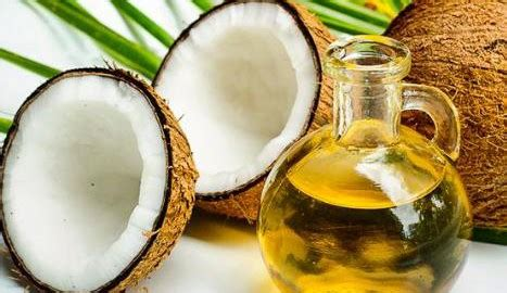 Membuat Vco Berkualitas Tinggi cara membuat minyak kelapa coconut