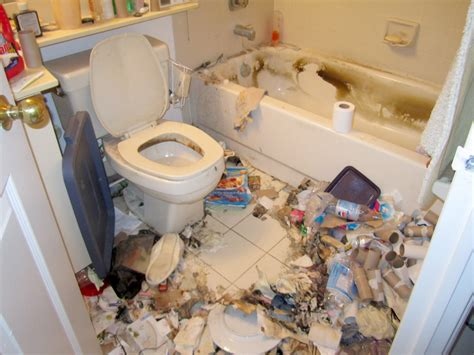 extreme bathrooms extreme cleaning toronto hoarding and extreme cleaning