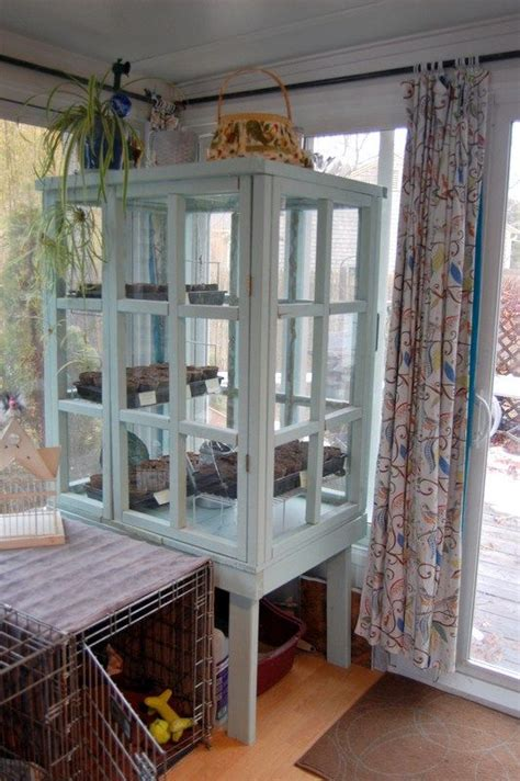 recycling  picture frames   indoor greenhouse