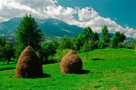 rodna national park wikiwand rodna national park wikiwand